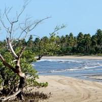chegada-na-praia-do-bainema-em-boipeba