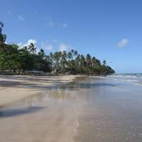 praia-da-cueira-ilha-de-boipeba-1