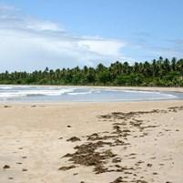 praia-do-bainema-ilha-de-boipeba