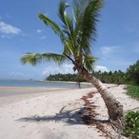 praia-dos-castelhanos-ilha-de-boipeba-2