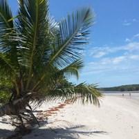 praia-dos-castelhanos-ilha-de-boipeba-3
