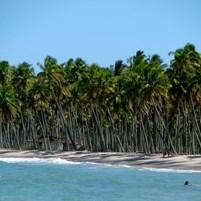 vista-da-praia-cueira-na-ilha-de-boipeba