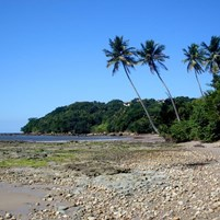 vista-da-praia-na-ilha-de-boipeba