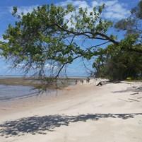 passeio-volta-ilha-de-boipeba-praia