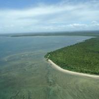 fauna-e-flora-ilha-de-boipeba