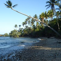 caminhadas-na-ilha-de-boipeba-1