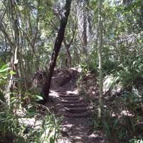 caminhadas-na-ilha-de-boipeba-2