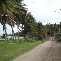 passeio-cova-da-onca-ilha-de-boipeba-10
