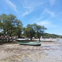 passeio-cova-da-onca-ilha-de-boipeba-4