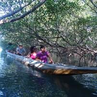 passeio-de-canoa-na-ilha-de-boipeba-4