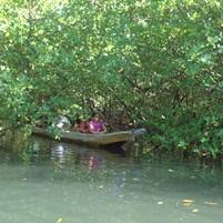 passeio-de-canoa-na-ilha-de-boipeba-5