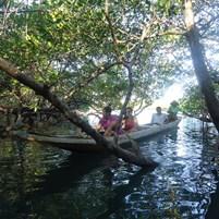 passeio-de-canoa-na-ilha-de-boipeba-8
