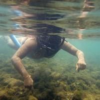 turista-mergulhando-na-ilha-de-boipeba