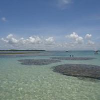 passeio-piscinas-recifes-ilha-de-boipeba-14