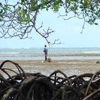 ilha-de-boipeba-ponta-dos-castelhanos-2