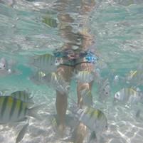 piscinas-naturais-morro-de-sao-paulo