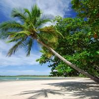 praia-do-encanto-morro-de-sao-paulo