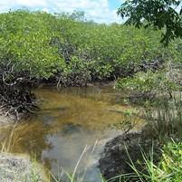 relevo-e-hidrografia-ilha-de-boipeba-3