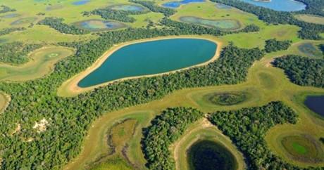 Pantanal Sul Matogrossense