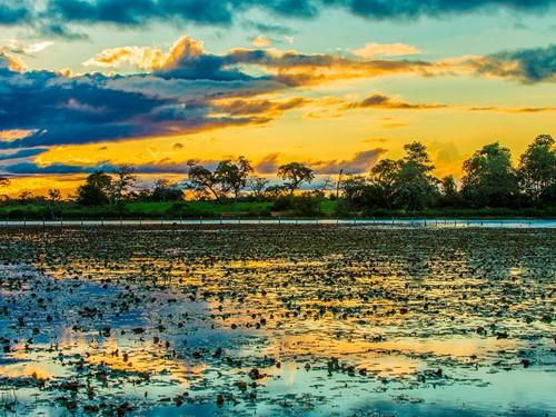 Pantanal-(3)